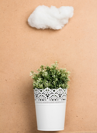 Little tree with white cloud Stock Photo