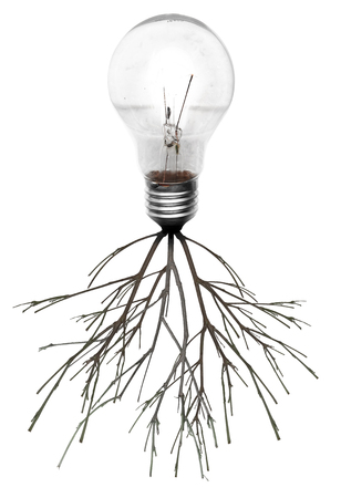 communication metaphor: Light bulb with roots and emerged on the icon with roots, concept Stock Photo