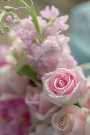 trillium: romantic rose bouquet with pink color tone selective focus