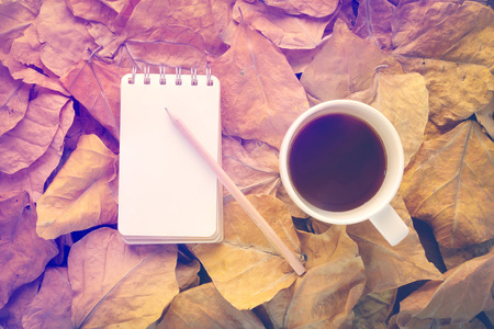 oldies: cup of coffee and notebook on dry leaves vintage color tone