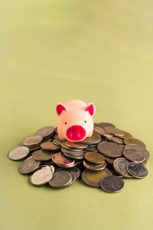 buying stock: A saving pig with  coins under feet : saving concept
