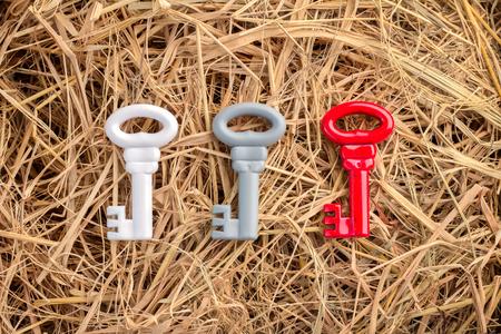 option key: three color keys on hay texture background