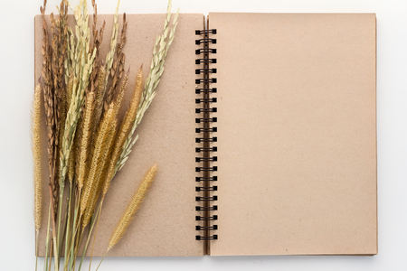 color page: blank brown color page notebook and rice on white background.jpg