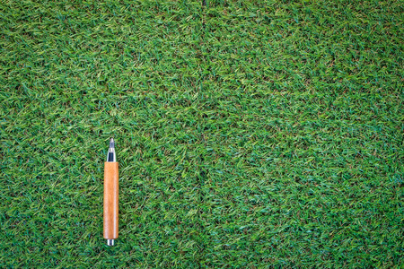 grass texture: sharp pencil on green grass  texture background with copy-space