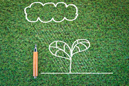 safe world: eco concept with drawing of tree and cloud on green texture background