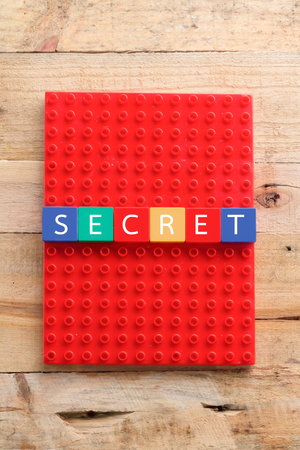 secretion: Conceptual image of business. Crossword from blocks with your idea Stock Photo