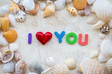 infatuation: love concept with sea shell frame and word i love you on white texture background Stock Photo