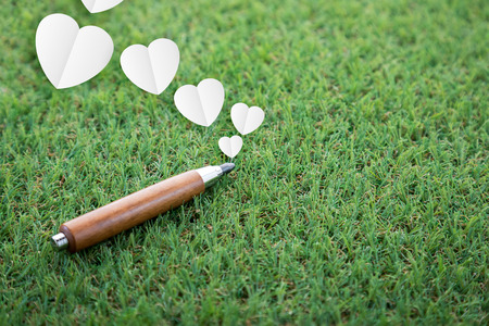 sharp pencil: Day of knowledge and business topic sharp pencil and heart shape paper on green field with copy-space for your idea Stock Photo
