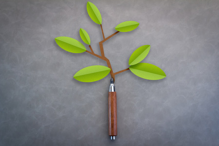 grew: little green tree by grew from pencil on grey background eco concept creativity concept Stock Photo