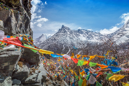 sutras: The Buddhist tibetan prayer flags on the top of mountain in Daocheng, Sichuan Province, Tibet of China.