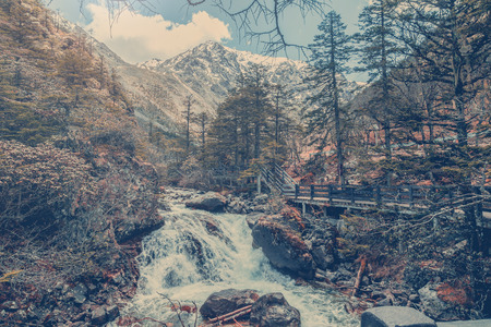 china landscape: vintage waterfall in forest in autumn china landscape background Stock Photo
