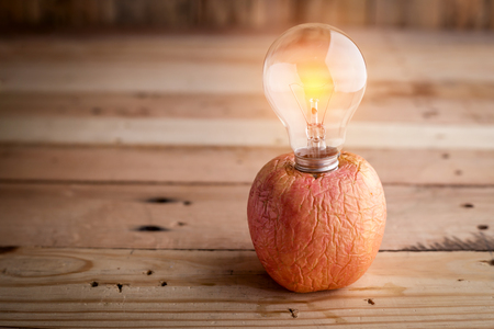 light bulb stick in red old apple creativity ideas concept