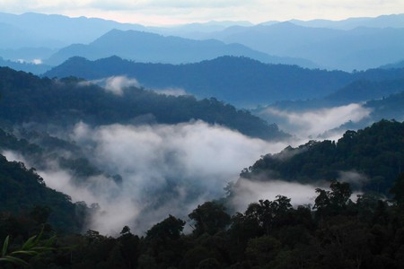 A view from mountains to the valley covered with smog Stock Photo - 7020062
