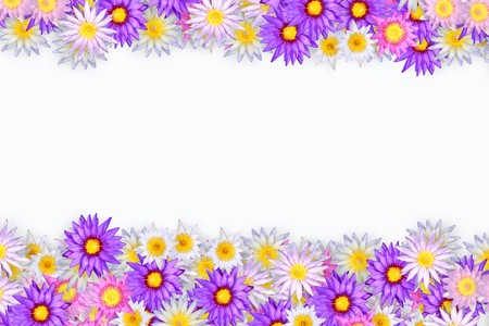 color of flower pattern for background. photo