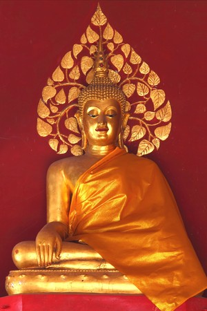gold buddha with red wall background at the temple, Phrae province north region of Thailand photo