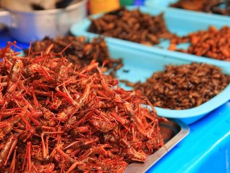 Fried locust in asia street market  Stock Photo