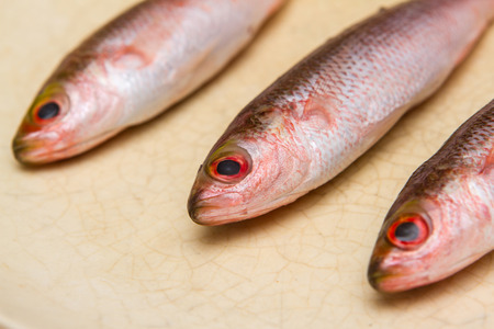 ful: three small fish close up prepared for cook on dish on white background