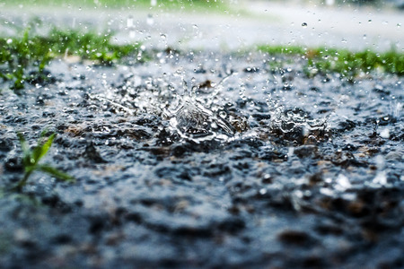 Gotas de lluvia en el suelo, hierba verde Foto de archivo
