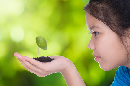 children hands: A girl holding a seedling in hand. She is going to grow. agriculture  concept with green background. Stock Photo