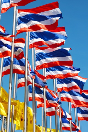 Thailand flags photo
