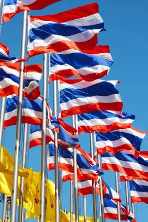 Thailand flags photo