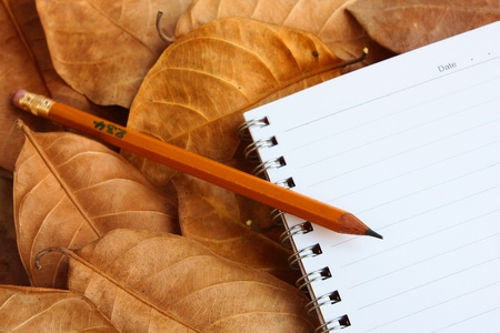 Notebook and pencil on Dry leafs. photo
