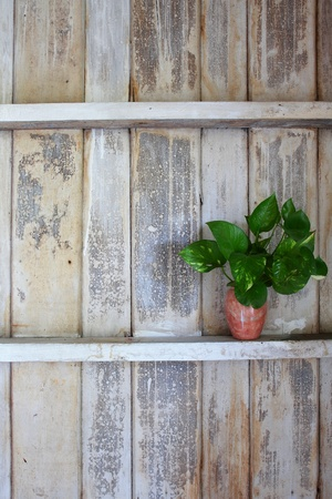 Old wood shelf on wooden wall photo