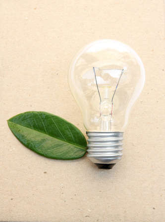 lightbulb with green leaves on brown paper