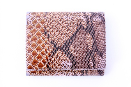 imitation leather: Similpelle borsa di serpente