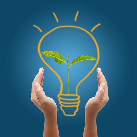 hand holding light bulb on blue background,young plant in a light bulb Stock Photo - 13094279