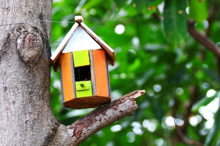Bird house hanging from the tree photo