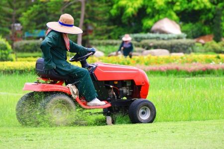 tondeuse: tondre la pelouse