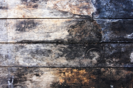 old wood texture Stock Photo - 16499613