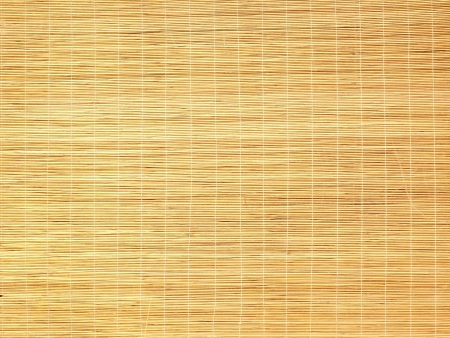 Bamboo Blind photo