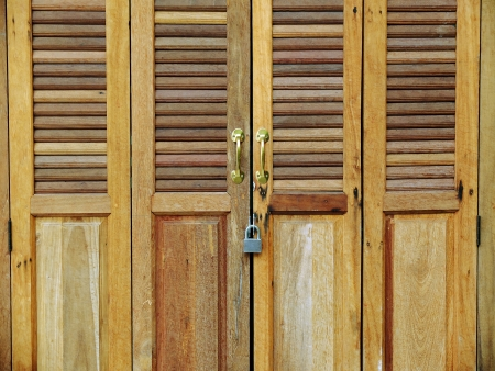 vintage wood door Stock Photo - 18235941