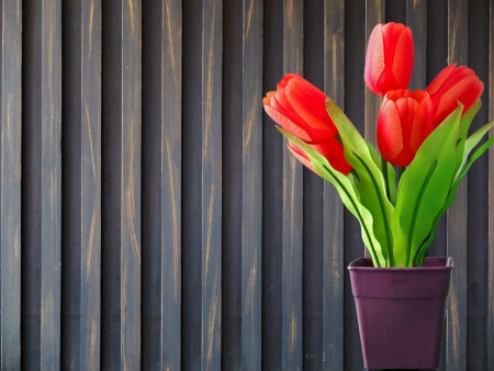 Tulips with wood background photo
