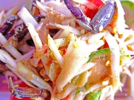 Green papaya salad Stock Photo - 18594182