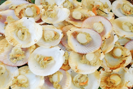 coquille: Scallops  Grilled shrimp