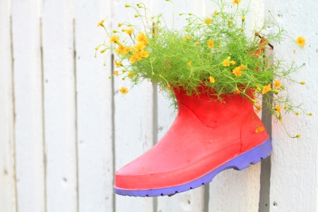 inanimate: flowers in boot