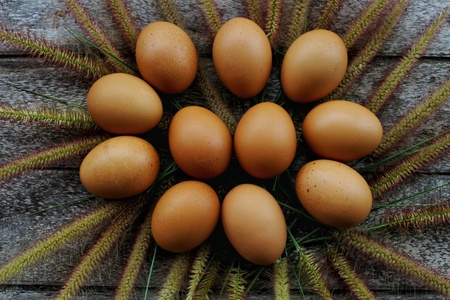 Fresh Rooster Eggs on top view on wood table at Local Farmer Market