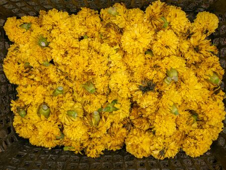 A Pile of Marigold Flowers Wither in The Basket Stockfoto