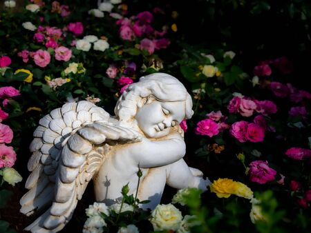 The Cupid Statue Sat Happily in The Roses Garden Фото со стока