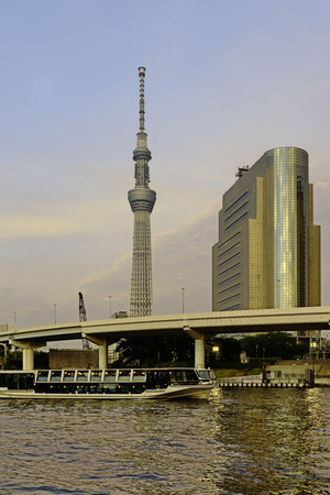 Skyline of Tokyo with the skytree tower.