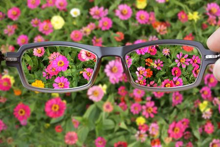 clearer: Eyeglasses Clearer Vision