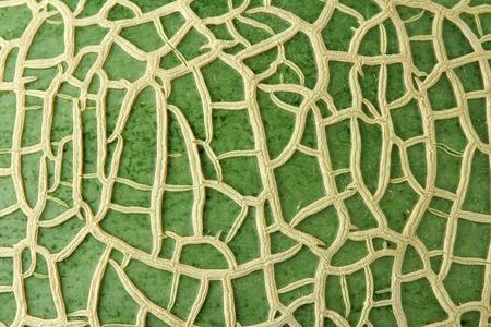 Melon Skin Texture