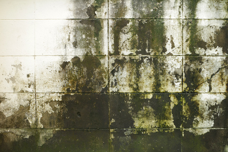 dirty: Dirty Mossy Brick Wall Stock Photo