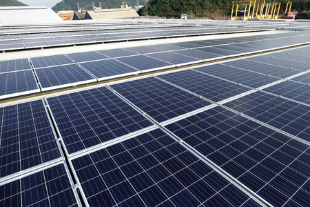tree service pictures: Large Scale Solar PV Rooftop