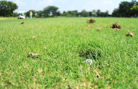 Golf Ball in the Sprinkler Head Hole Stock Photo