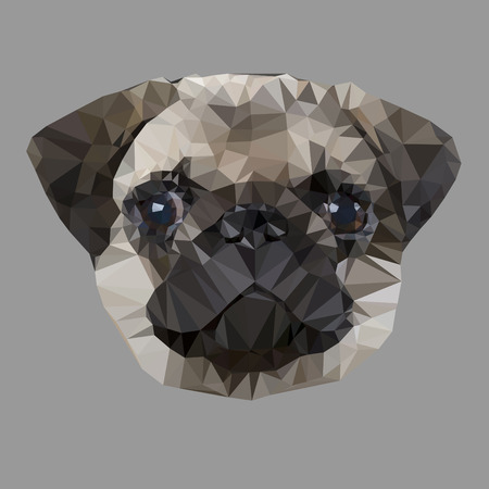 pug dog: Pug dog face Polygon style