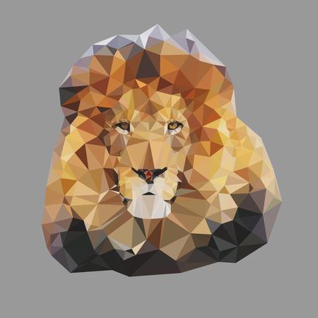 royal safari: Geometric polygon lion head Stock Photo